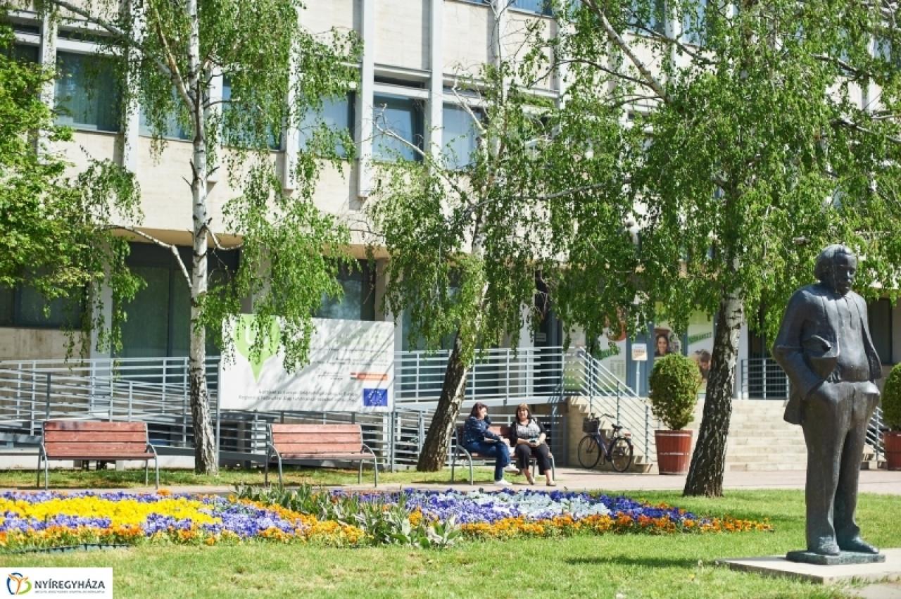 A Móricz Zsigmond Könyvtár nyári programajánlata