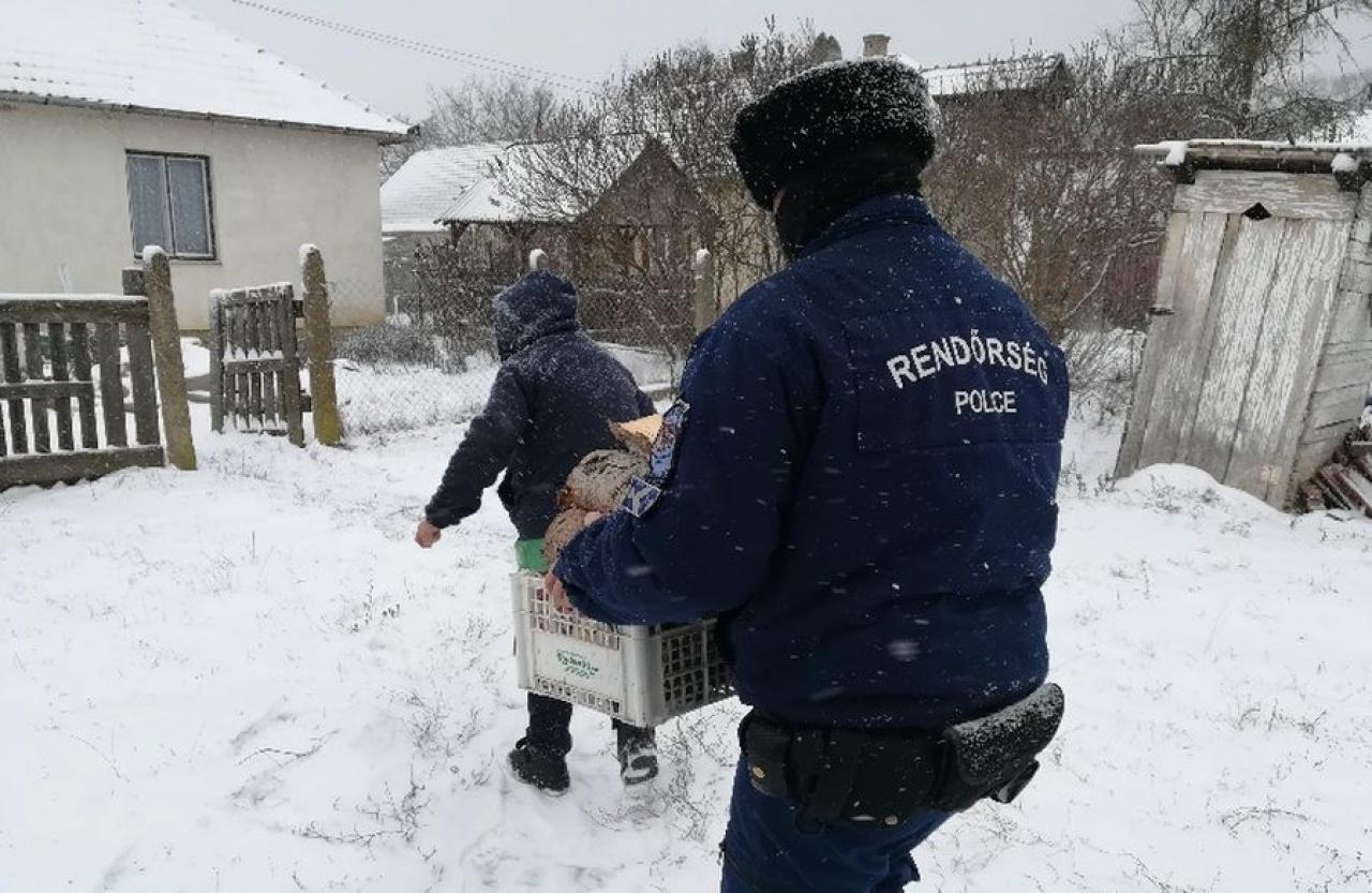 Napi jótett – Megyei településen segítettek a rendőrök egy idős hölgynek tűzifát hordani