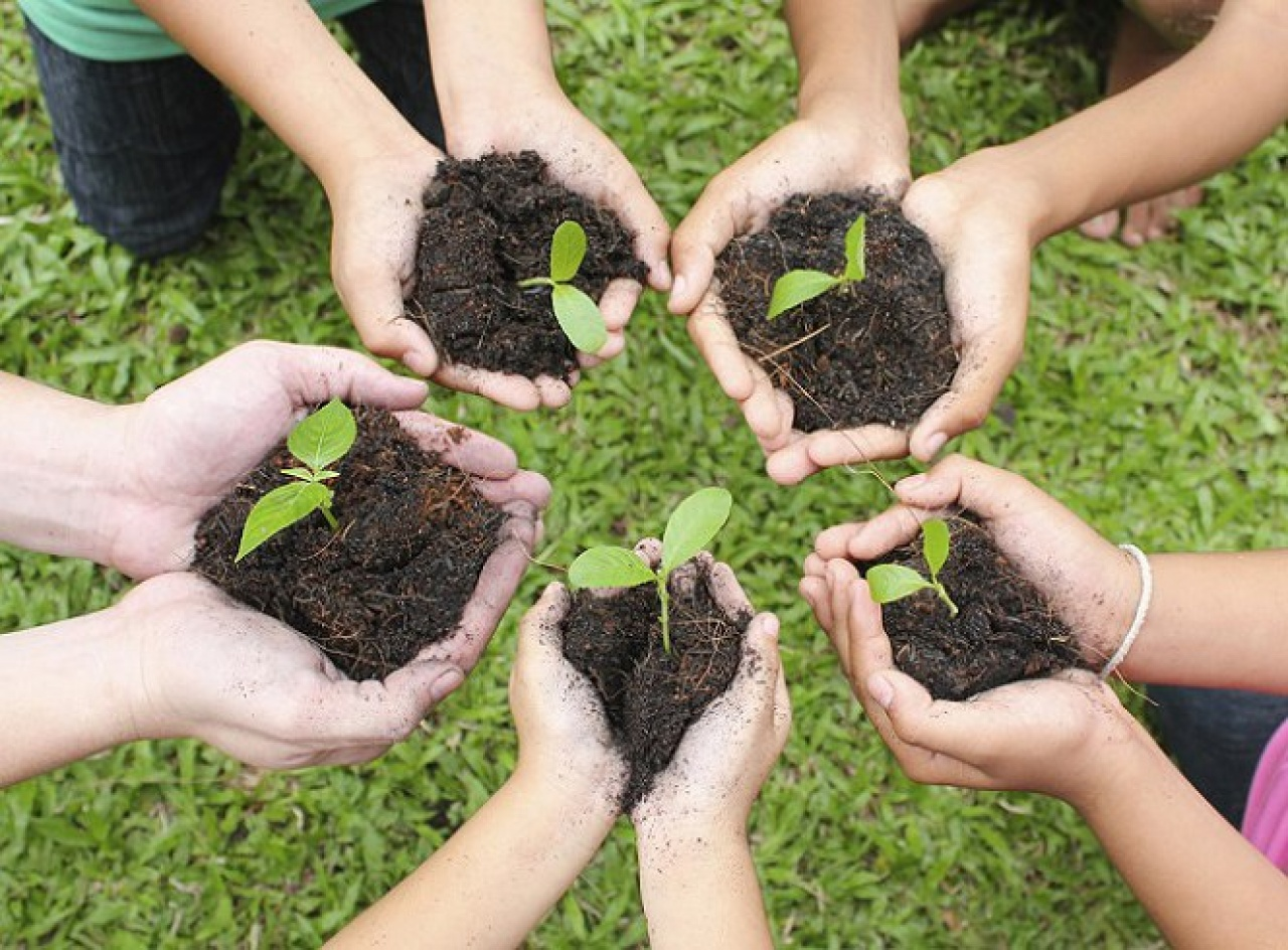 Együtt egy zöldebb jövőért!