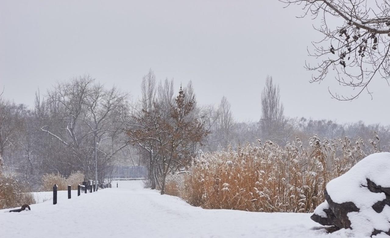 Változékony télies időjárás – Hétvégi összegzés és előrejelzés