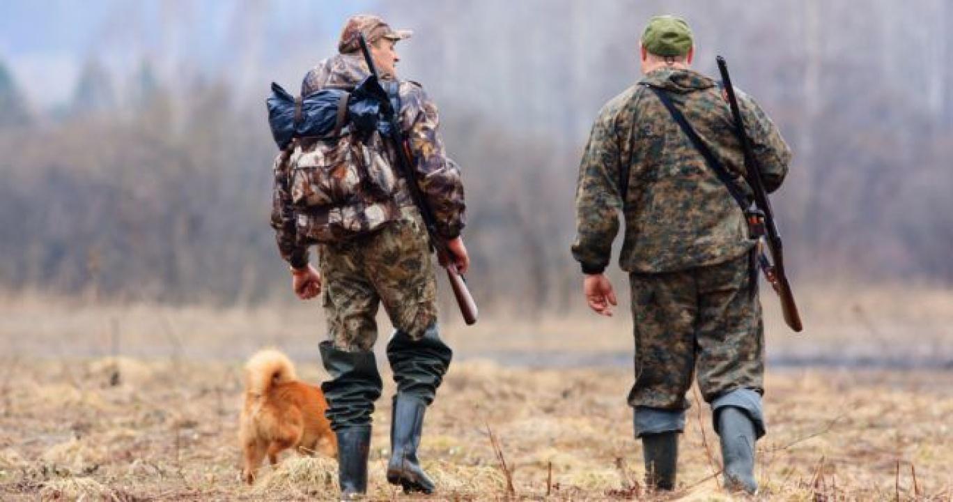 Vadászkamara - Most kell megújítani a vadászjegyeket!