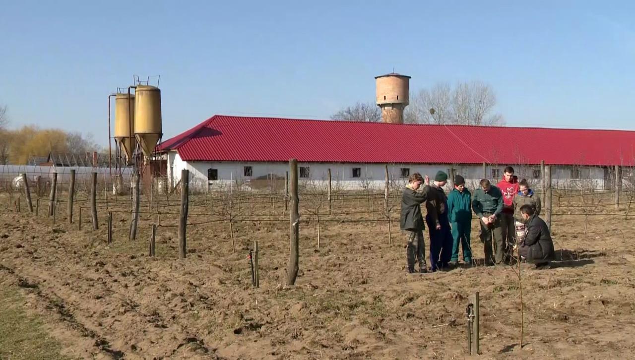 Agrárcenzus – Teljes körű mezőgazdasági összeírás készül