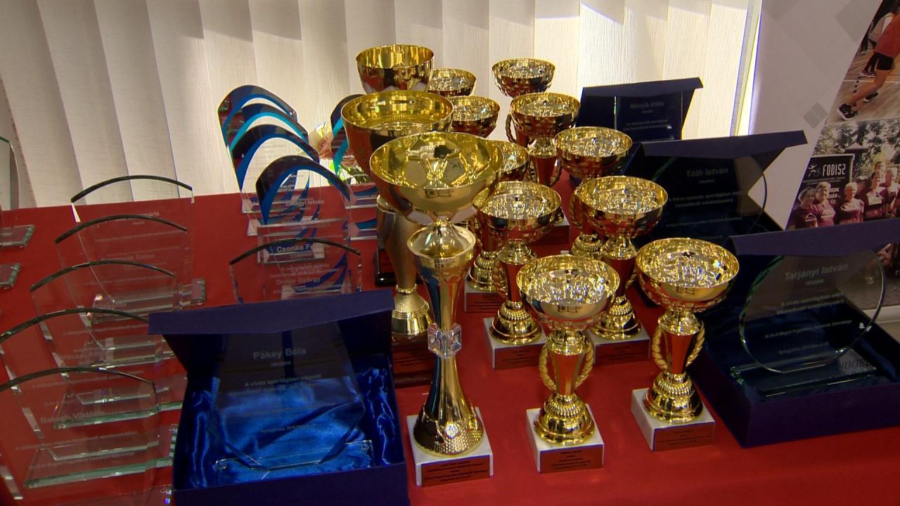 Sportgála - díjazták a megyei fogyatékos sportolókat