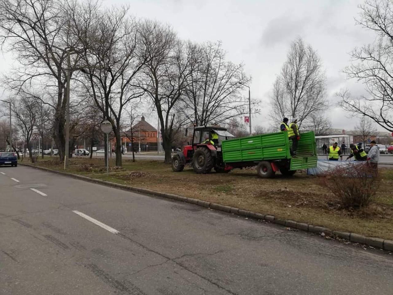 Tavaszi nagytakarítás – Száraz ágakat és leveleket távolít el a NYÍRVV a zöldfelületekről