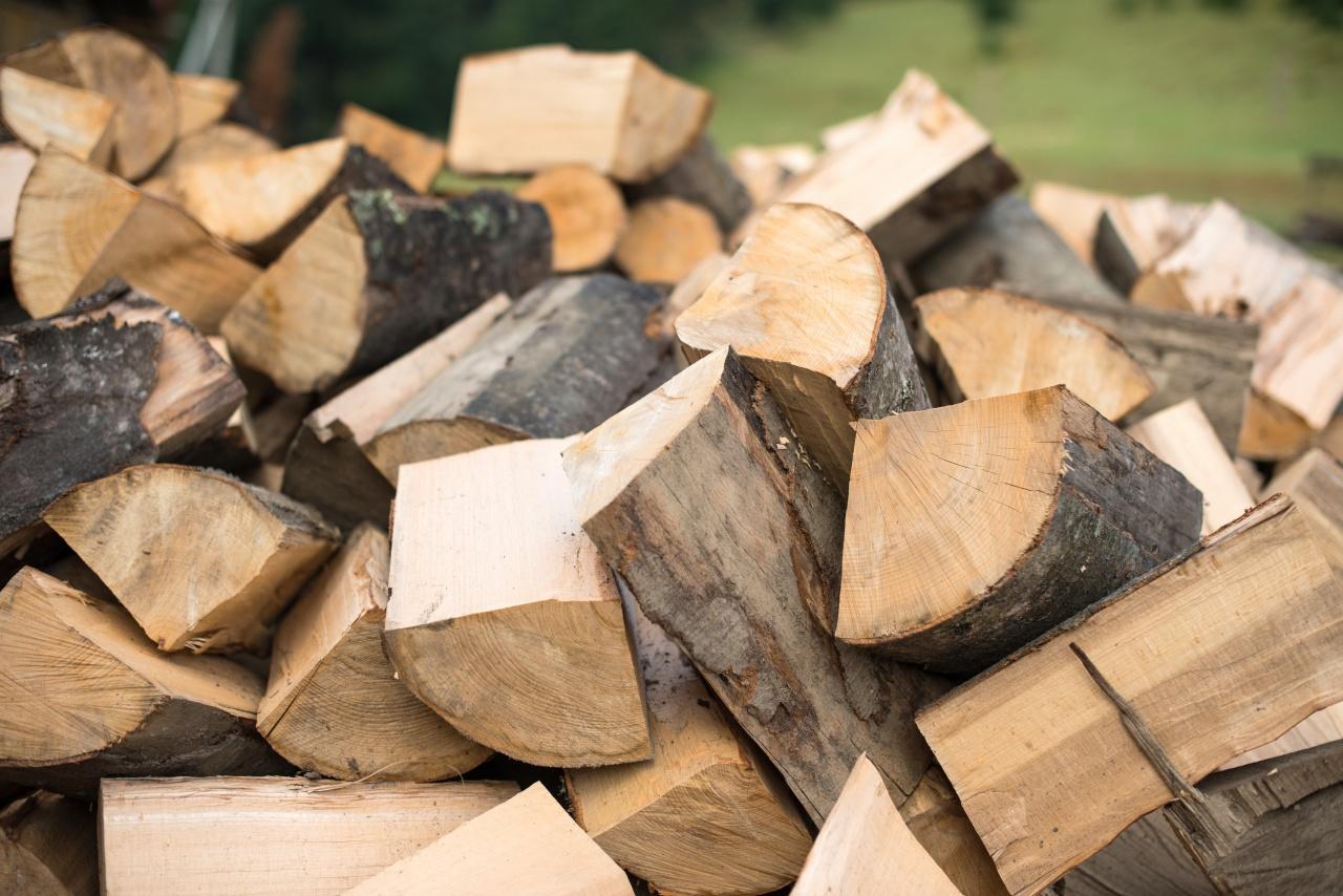 Tűzifaosztás és rezsicsökkentés – Segíti a hátrányos helyzetű családokat az önkormányzat