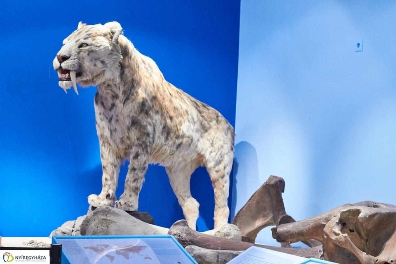 Jégkorszaki vadászkalandok az óriások birodalmában - előadás a Jósa András Múzeumban
