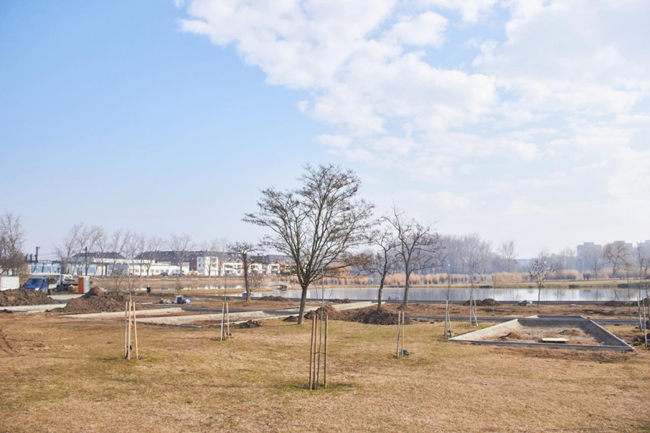 Tovább zöldül a Bujtos - Már zajlik a projekt