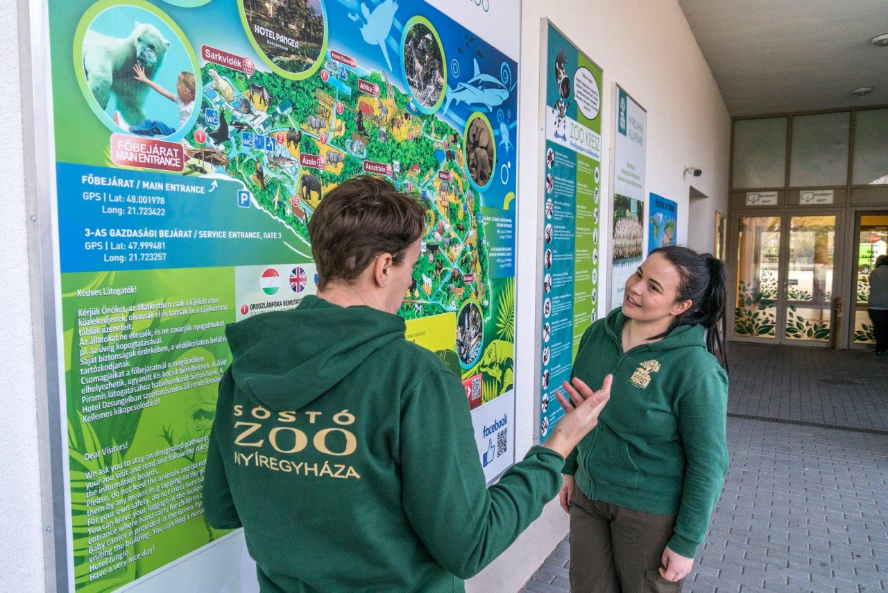 Nemzetközi oktatás a Nyíregyházi Állatparkban – Egy angliai diák Nyíregyházán