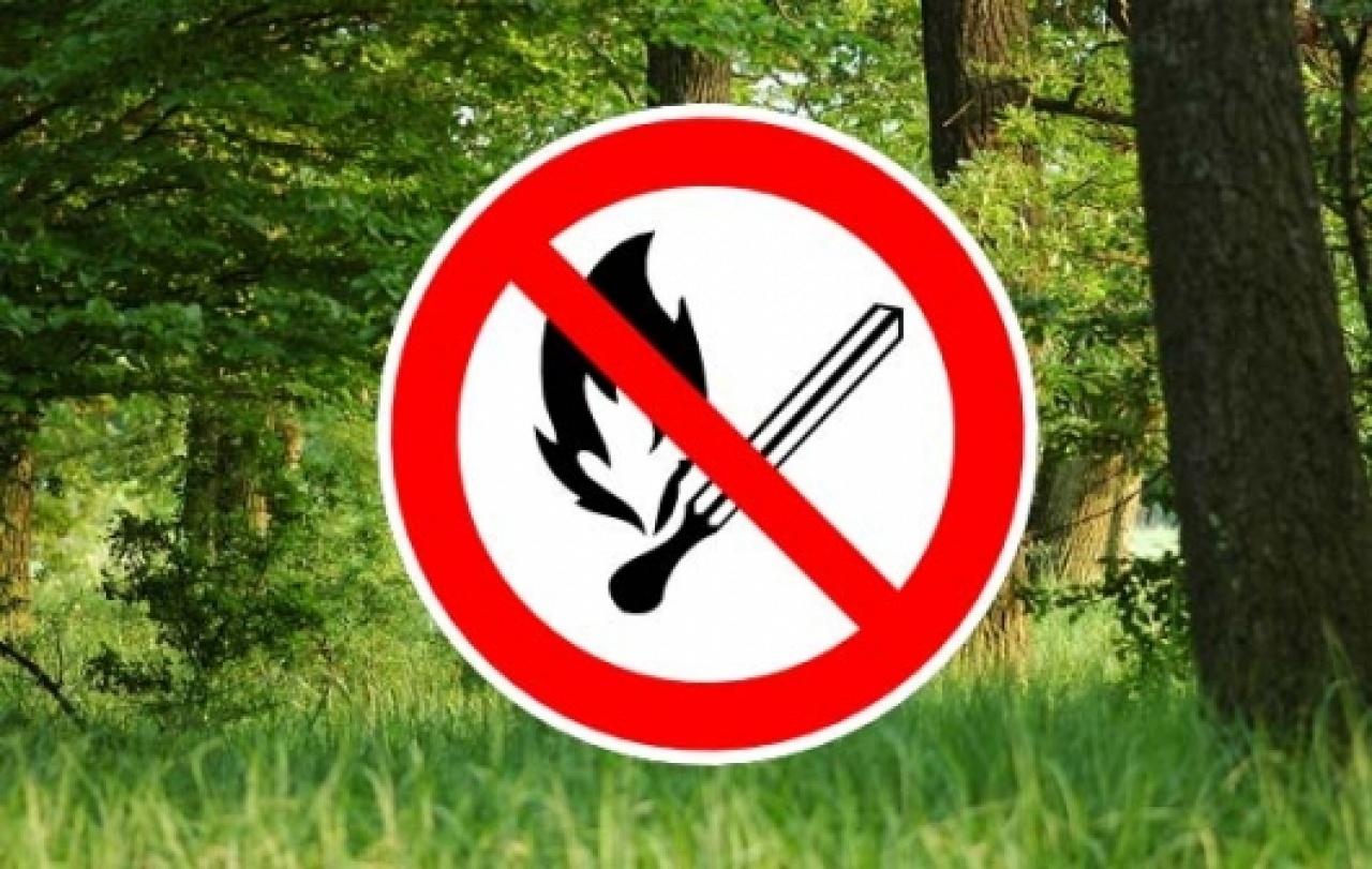Nébih – Már 12 megyében van tűzgyújtási tilalom
