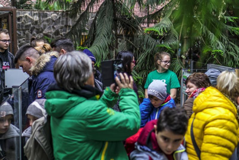 100 forintos nap a Nyíregyházi Állatparkban