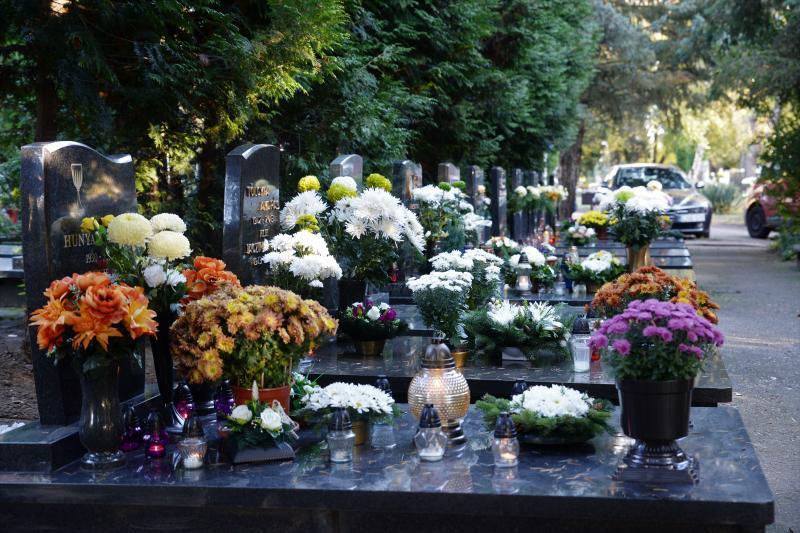 Az emlékezés virágai