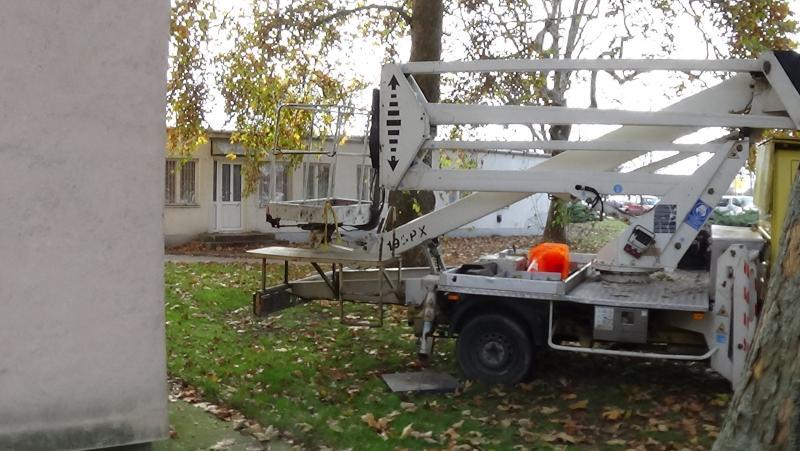 Favágási munkálatok az Árpád utcán