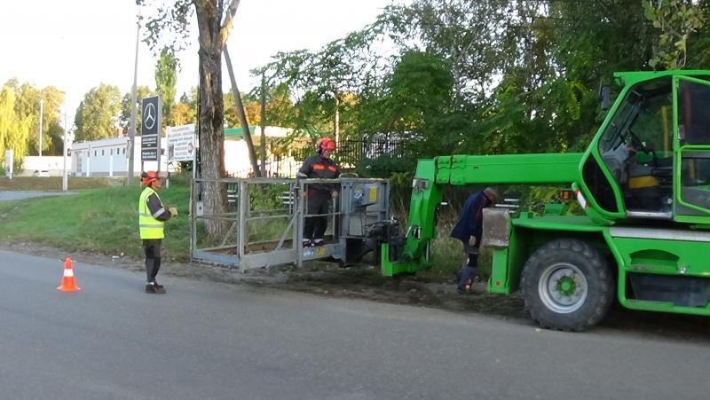 Favágási munkálatokat végeztek szerdán a Jég és a Nyírfa utcán