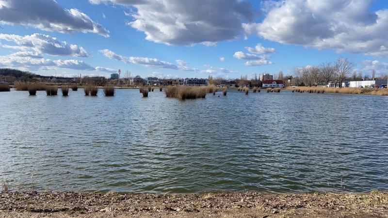 Februárban is csodás a Bujtosi Városliget (Olvasói fotók!)