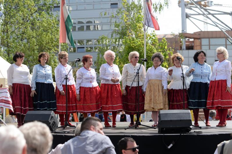 Fennállásának tizedik évfordulóját ünnepli idén a Vadrózsa senior tánccsoport  (Fotók: Trifonov Éva, Szarka Lajos)