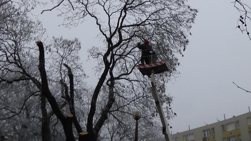 Gallyazási munkálatok a Petőfi téren