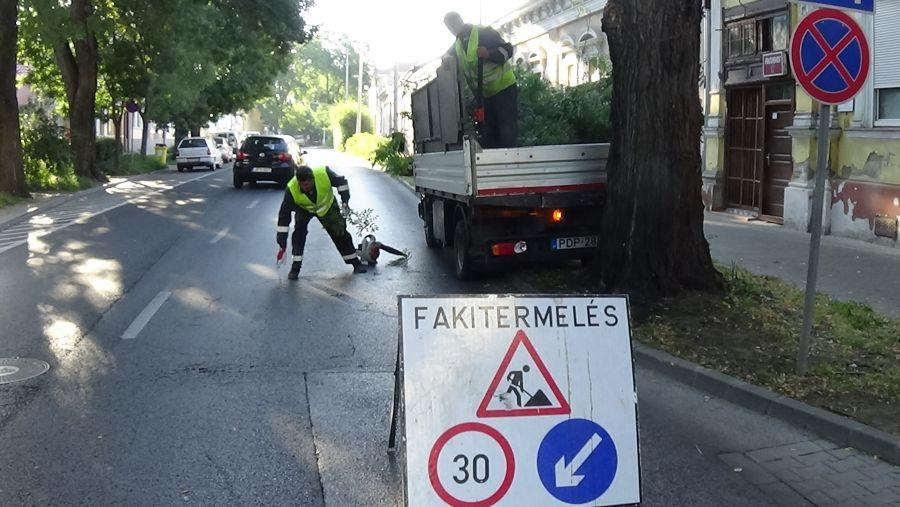 Gallyazási munkálatokat végeznek a Szent István utcán