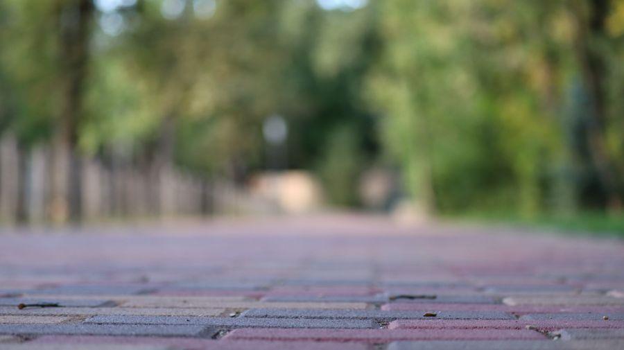 Így készült az Erdei sétány_4