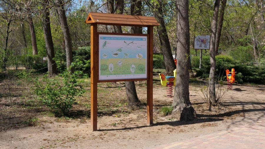 Így készült az Erdei sétány_6