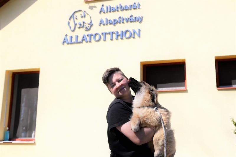 Látogatás az Állatbarát Alapítvány Állatotthonában