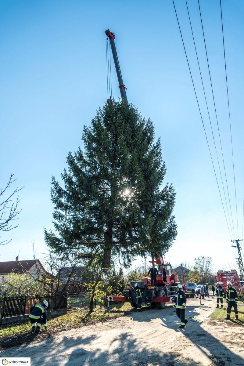 Megérkezett a karácsonyfa a Kossuth térre