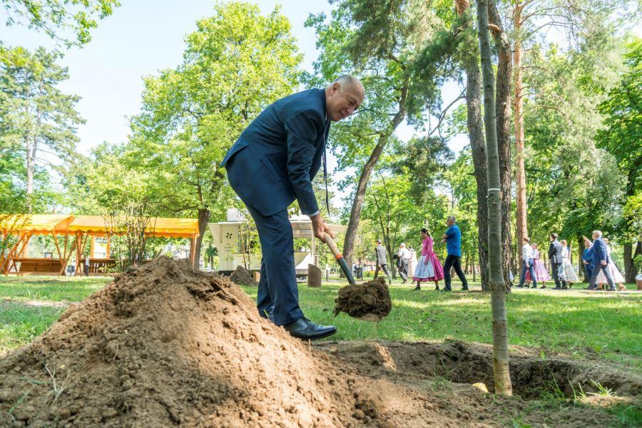 Megyei Jogú Városok Polgármesterei ültettek fákat Sóstógyógyfürdőn