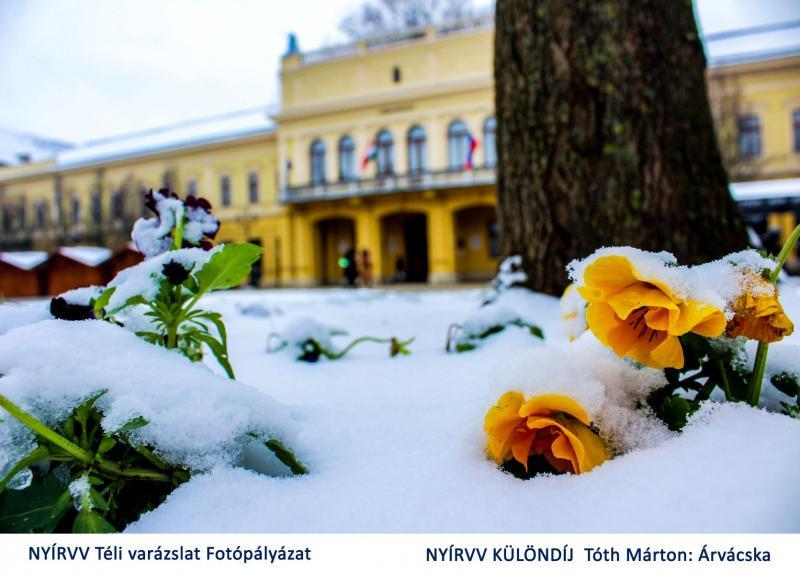 NYÍRVV Téli varázslat fotópályázat