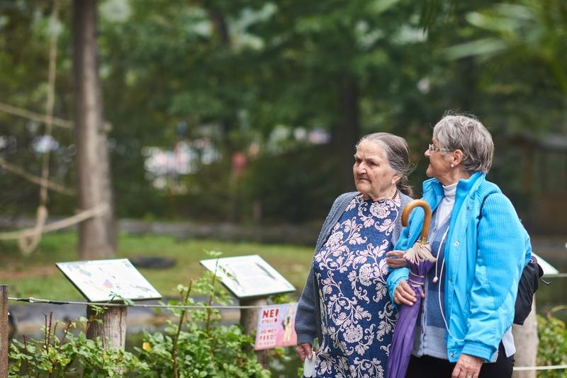 Nyugdíjas séta az Állatparkban