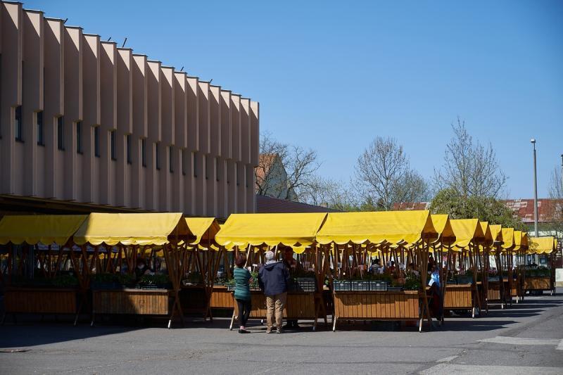 Palántavásár a Búza téren