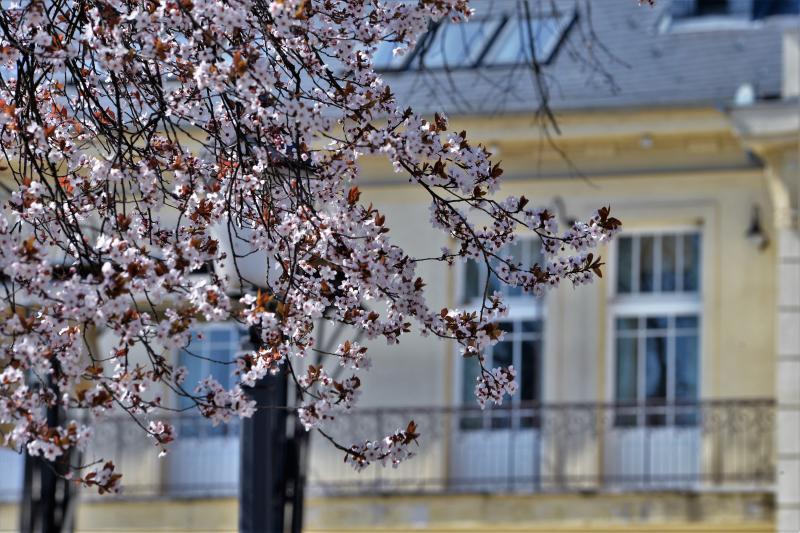 Tavaszodik Sóstó