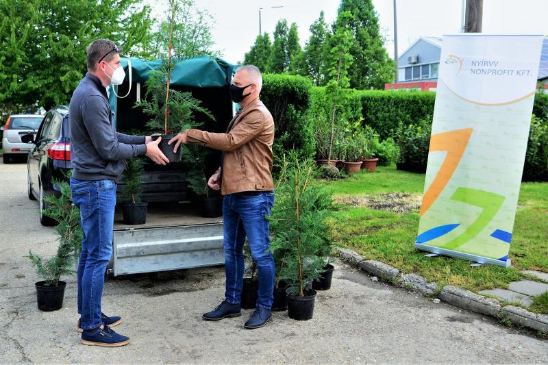 Ültess egy fát a holnapért! - megkezdődött  a növények osztása a NYÍRVV-nél
