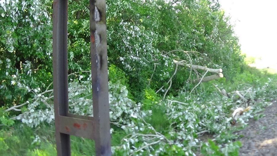 Viharkárok Nyíregyházán