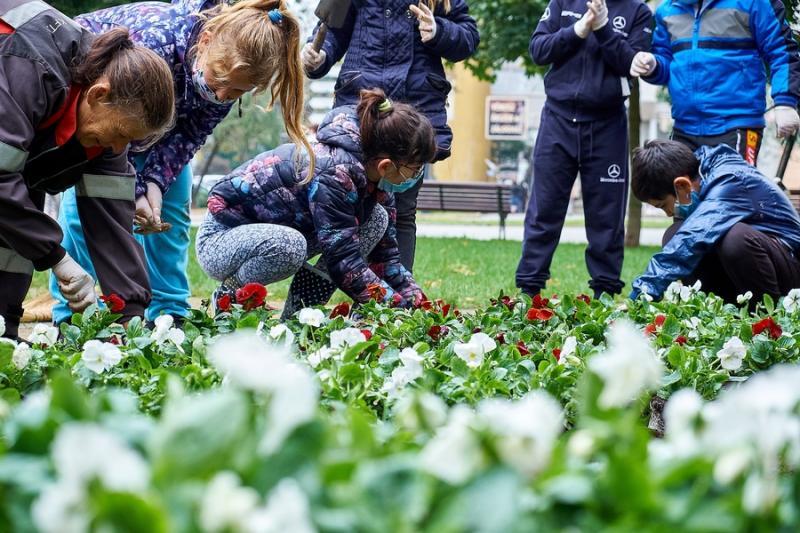 Virágültetés az Országzászló téren - 20201012