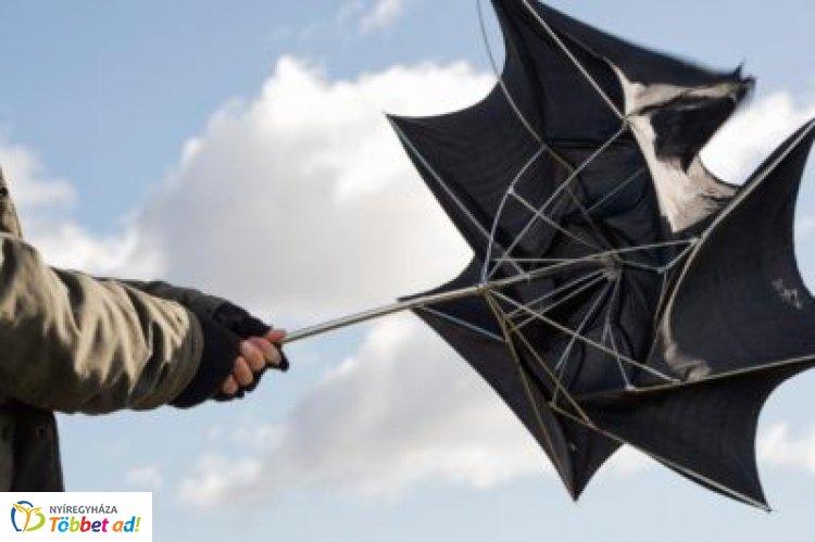A szélvihar károsultjainak két munkanapon belül be kell jelenteniük a kárigényüket