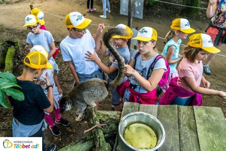 Megvannak a Zoo-suli turnusainak időpontjai – Lehet jelentkezni oktatónak is!
