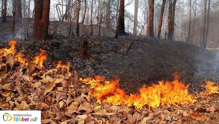 Hét vegetációtűz volt kedden Szabolcs-Szatmár-Bereg megyében
