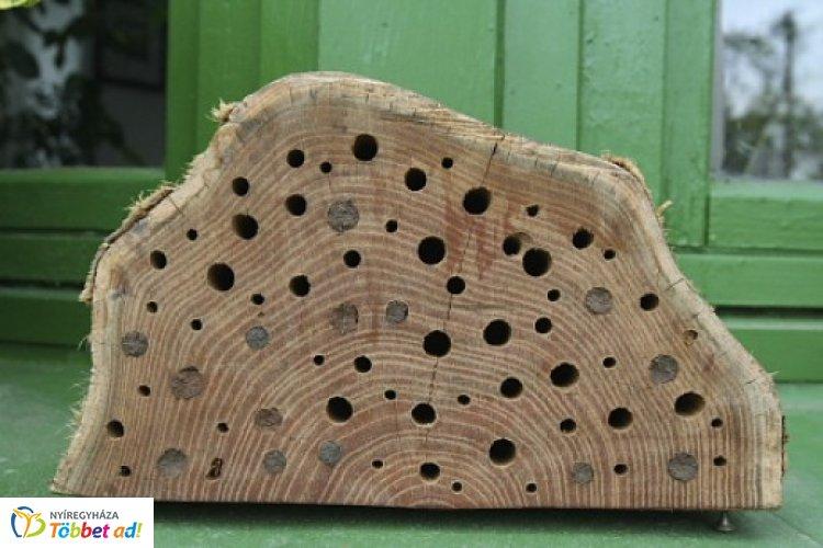 A lakosság méhecskehotelekkel is sokat tehet a beporzó rovarok védelméért!
