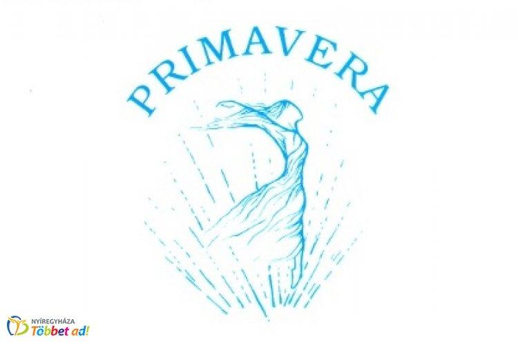 A Primavera Balettegyüttes 42. koncertje a Váci Mihály Kulturális Központban