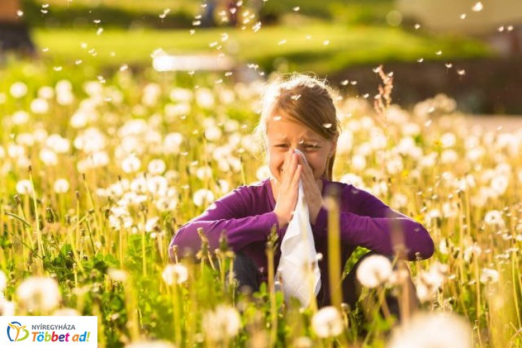 Április - Már virágoznak az allergén növények - Segít az allergia naptár