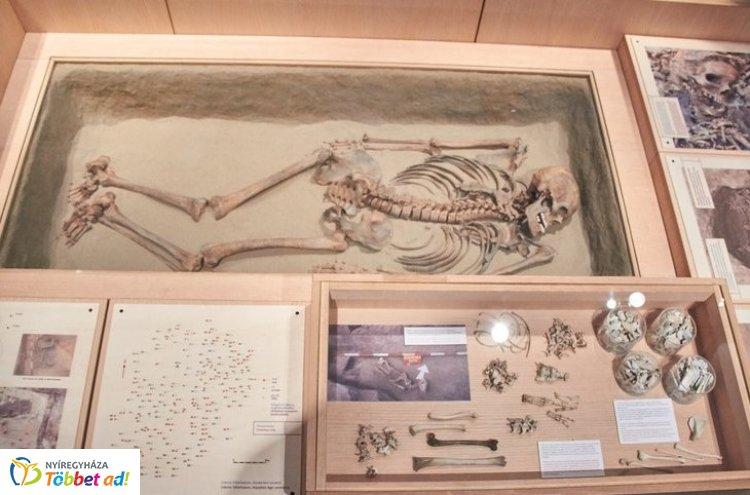 Újabb szenzáció a Jósa András Múzeumban! Dr. Csont Nyíregyházán rendel