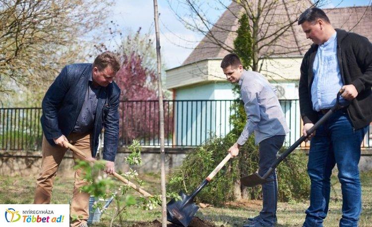 Tíz fát ültettek a holnapért a Kertvárosban a fásítási program részeként