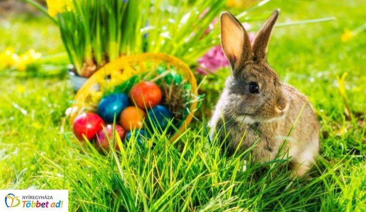 A húsvéti ünnepkörhöz kapcsolódóan számos tradíció él hazánkban