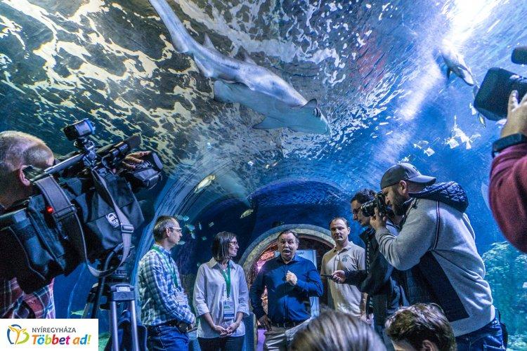 Tengerbiológusok a Nyíregyházi Állatparkban – Középpontban a ráják és a cápák
