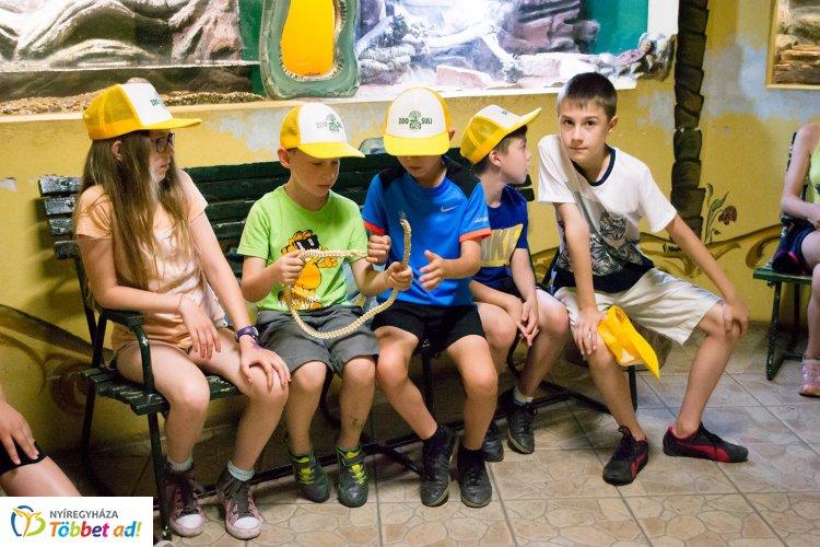 Május 2-től lehet jelentkezni a Nyíregyházi Állatpark nyári táborába – Részletek itt!