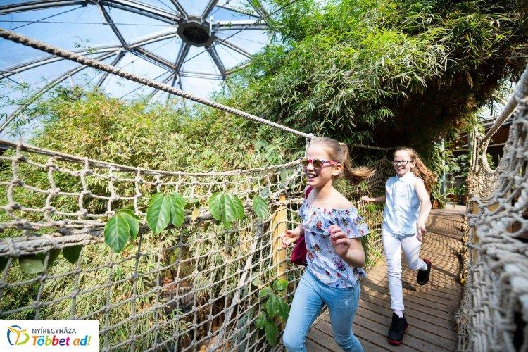 Fóka-show, tevegelés és dzsungel hangulat vár a Nyíregyházi Állatparkban május elsején is!