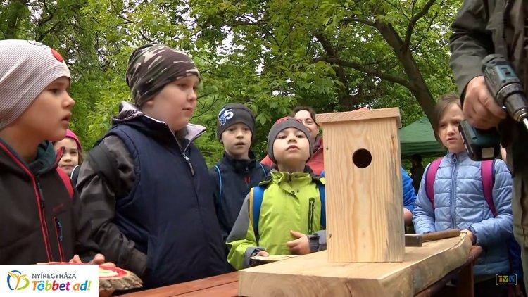 Madarak és fák napja a botanikus kertben – Bemutatók, programok és kézművesség