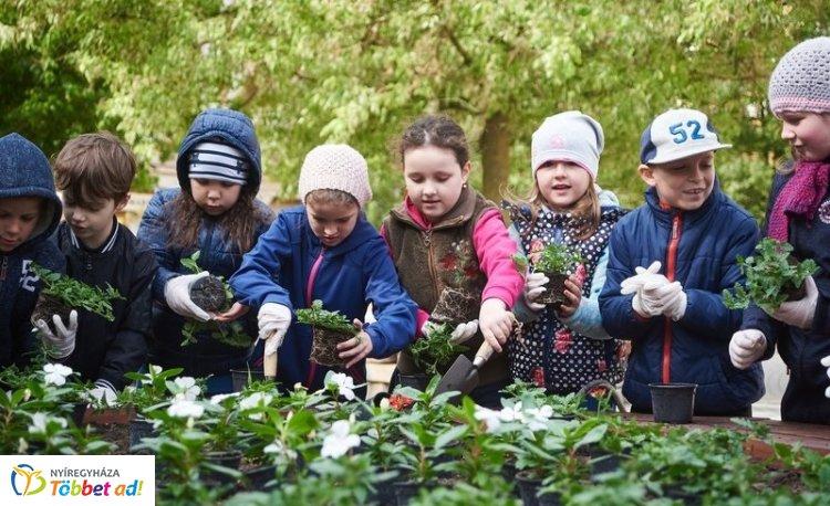 Folytatódik a városszépítés: közel ezer virágot ültettek el kisiskolások a belvárosban