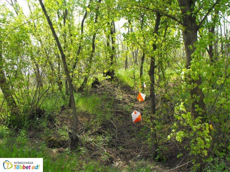 Tájékozódási futás és Trail-O Váltó Országos Bajnokság komoly mezőnnyel