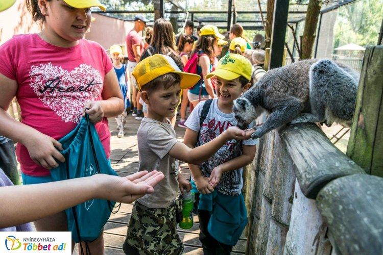 Jövő héten indul a Zoo-Suli, a Nyíregyházi Állatpark nyári tábora – Hasznos tudnivalók!
