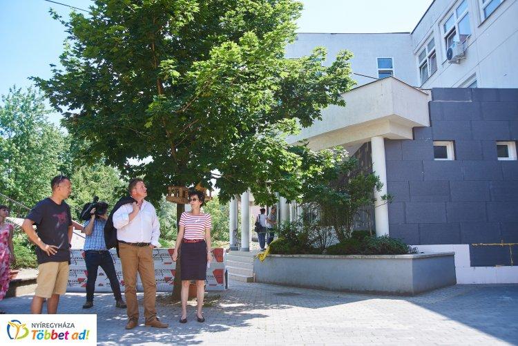 Jó ütemben haladnak az energetikai felújítási munkálatok a Gárdonyi iskolánál is!